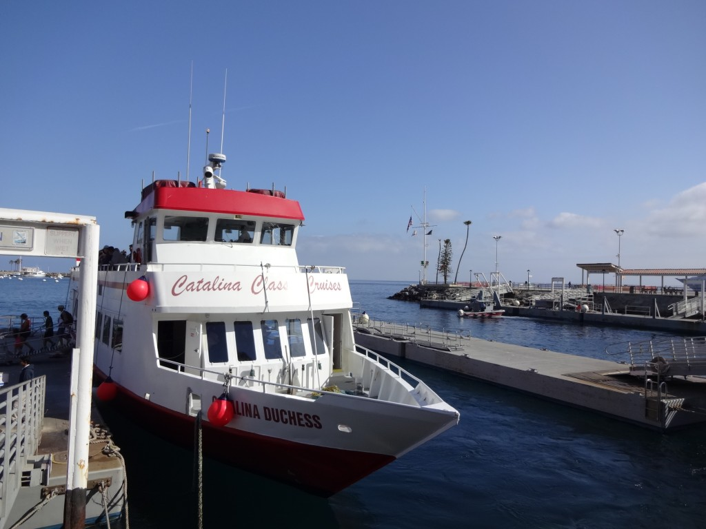 DSC07432この船でピストン移動