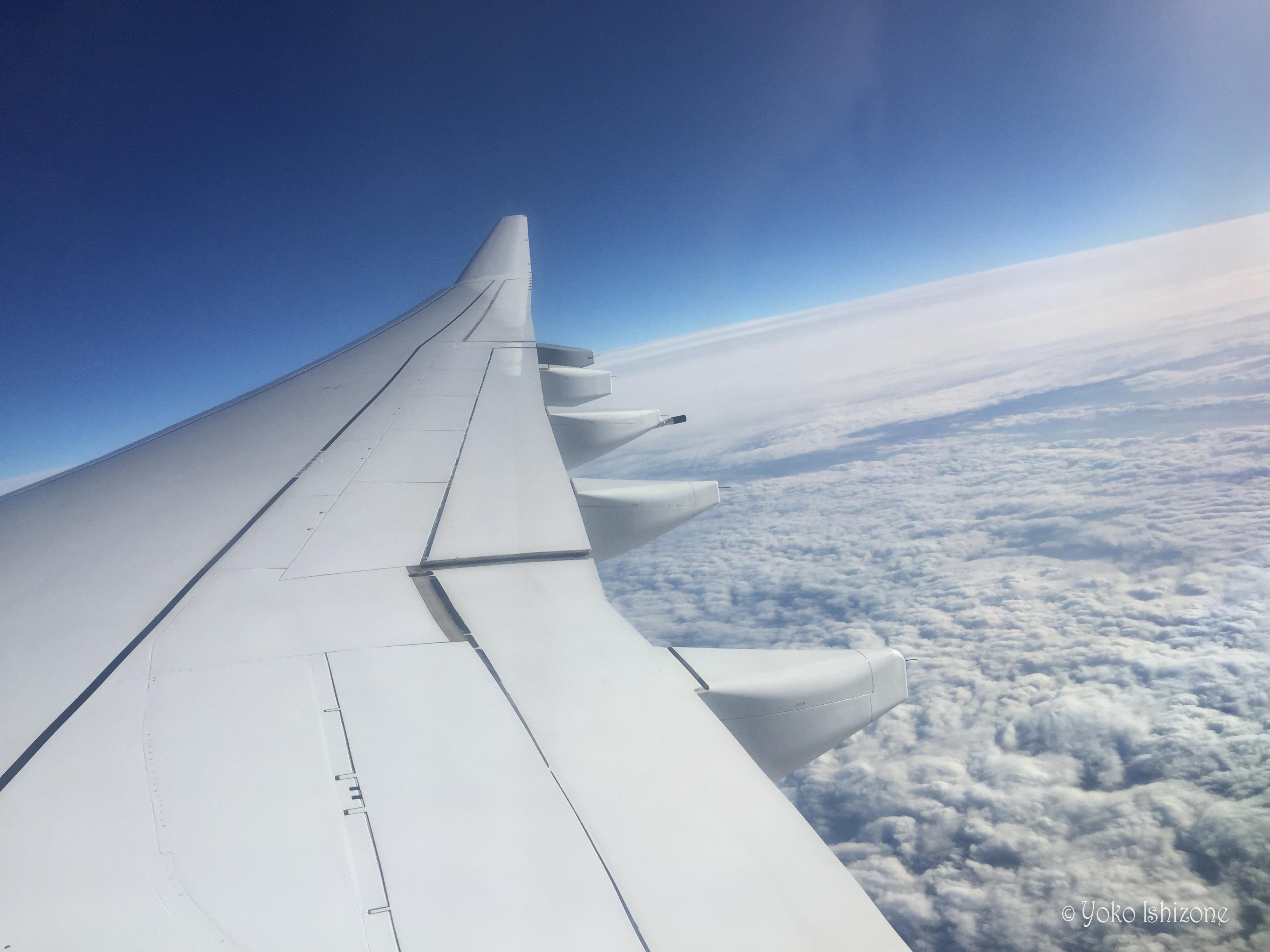 航空券を予約したら、出発前に、これだけは確認してから旅を楽しんでください